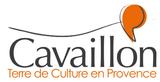Réaménagement des voies du centre ville de Cavaillon (84)
